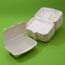 CARTONE 10 CONFEZIONI - BOX IN POLPA RETTANGOLARE Ml.600 x 50 PZ. Cm.19x13,5