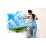 Pitture murali ed antimuffa Naturale